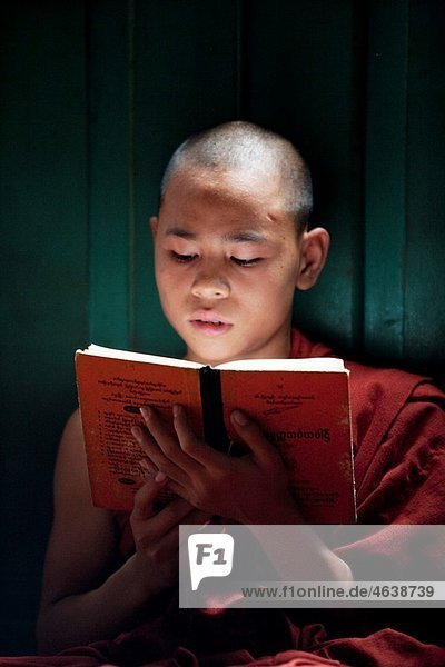 Young bhuddist monk studing