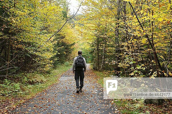Franconia Notch State Park - Man walking along Franconia Notch Bike Path during the autumn months in the White Mountains  New Hampshire USA.