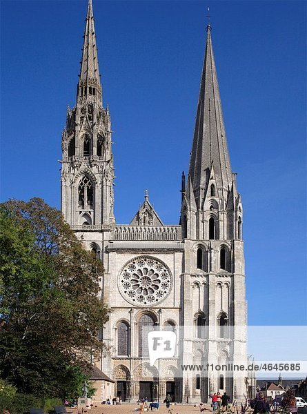 France  Ile-de-France  Chartres  cathedral