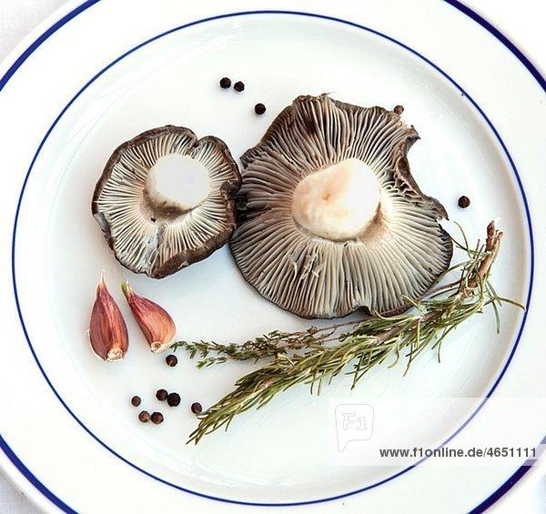 Hygrophorus marzuelus