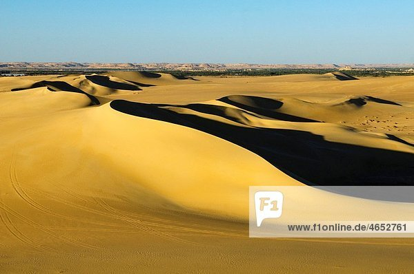 beautiful sand dunes at sunset near Siwa Oasis in Egypt
