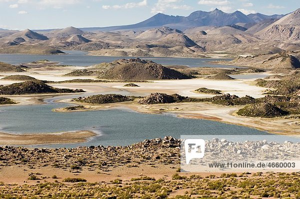 Lauca national park  UNESCO Biosphere Reserve  Arica and Parinacota Region  Chile