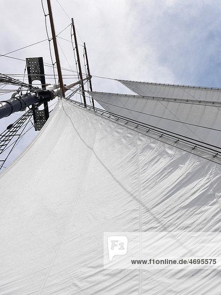 Großsegler mit dreieckigem Segel und Fock am Mast