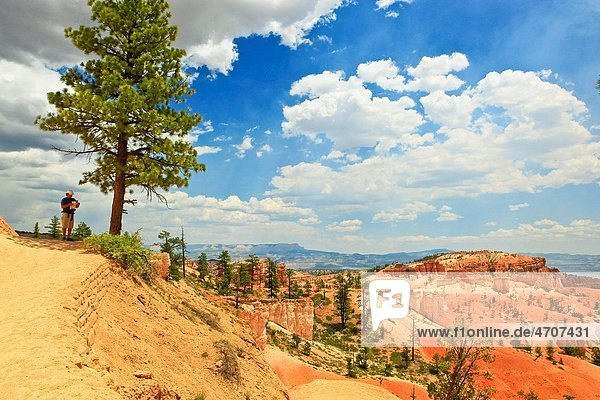 man standing on bluff in bryce canyon  utah