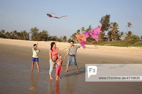 South Asian Indian parent and children trying to fly colourful kites on seashore   Shiroda   Dist Sindhudurga   Maharashtra   India MR703D 703E 703F 703G