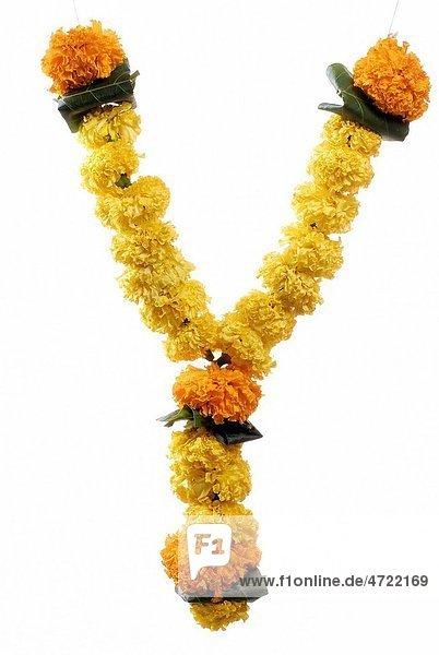 Marigold garland for prayer on Indian Dussera dusera Festival