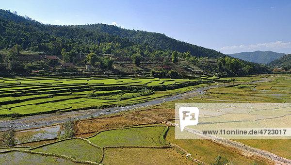 Mai Chau Tal  Vietnam