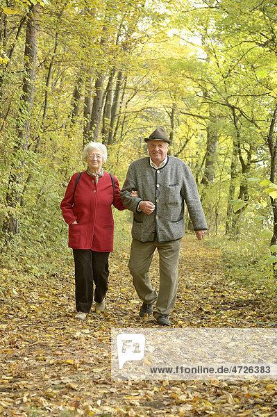 Herbstspaziergang eines Pensionistenpaares  Großau  Niederösterreich  Österreich  Europa