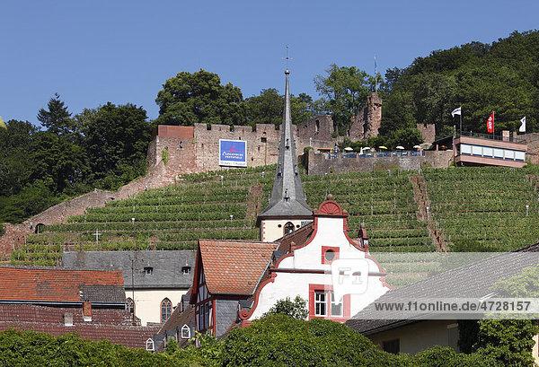 Klingenberg mit Burgruine Clingenburg  Mainfranken  Unterfranken  Franken  Bayern  Deutschland  Europa