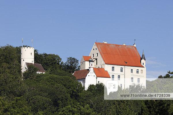 Burg Mindelburg  Mindelheim  Unterallgäu  Allgäu  Schwaben  Bayern  Deutschland  Europa