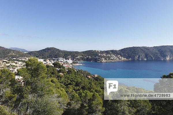 Camp de Mar  Mallorca  Balearen  Spanien  Europa