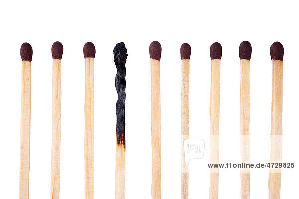 Row of matches  one burnt