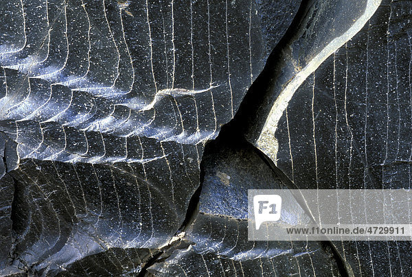 Obsidian  vulkanisches Gesteinsglas  Landmannalaugar  Fjallabak  Island  Europa