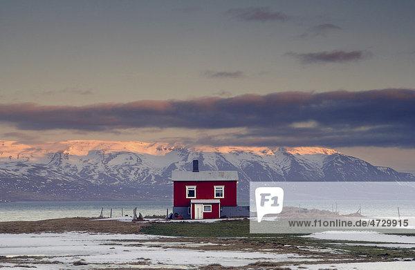 Kleines Haus bei DalvÌk in Nordisland  Island  Europa
