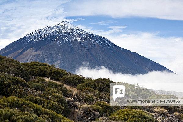 Blick auf den Pico del Teide  Teneriffa  Kanarische Inseln  Spanien  Europa