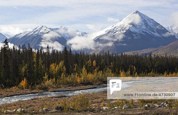 Der Bach Quill Creek  Altweibersommer  herbstlich gefärbte Blätter  Herbst  St. Elias Mountains  Eliaskette  hinten der Kluane-Nationalpark  Yukon Territorium  Kanada