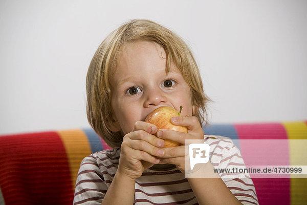 Junge  4 Jahre  isst einen Apfel