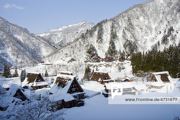 Dorf mit traditionellen Gebäuden im Winter  Shirakawa-go  Gifu  Japan  Asien