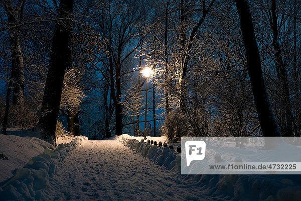 Coburg bei Nacht im Winter  Bayern  Deutschland  Europa