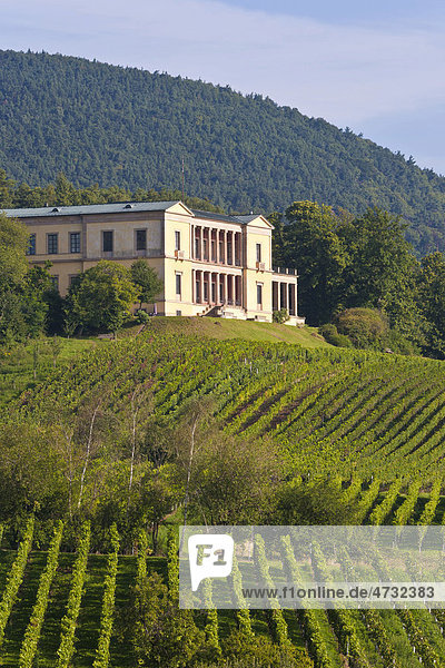 Villa Ludwigshöhe  Weinberge  bei Edenkoben  Deutsche Weinstraße  Pfalz  Rheinland-Pfalz  Deutschland  Europa