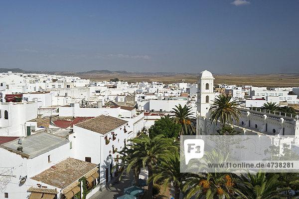 Conil de la Frontera  Costa de la Luz  Andalusia  Spain  Europe