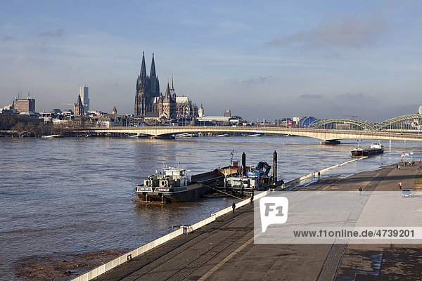 Hochwasser am Rhein  Köln  Nordrhein-Westfalen  Deutschland  Europa