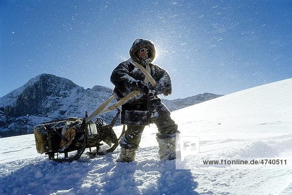 Mann  als historischer Polarforscher gekleidet  schleppt schweren Schlitten durch Schneelandschaft  Dachstein  Oberösterreich  Steiermark  Österreich  Europa