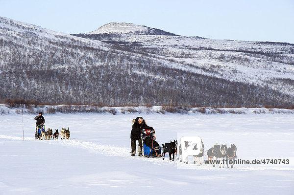 Die Gewinner des Finnmarksl¯pet 2010 und Favoriten für die kommenden Rennen: Ralph Johannessen  rechts  und Robert Sörli  links  Finnmarksl¯pet  nördlichstes Schlittenhunderennen der Welt  Finnmark  Lappland  Norwegen  Europa