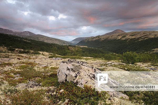 Fjelllandschaft nahe Bjornhollia im Rondane Nationalpark  Norwegen  Skandinavien  Europa