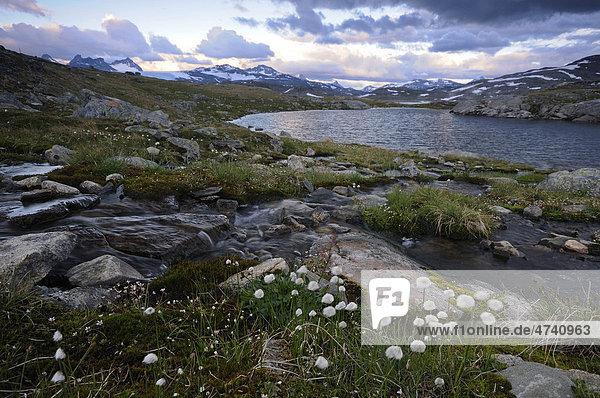 Gebirgslandschaft im Jotunheimen Nationalpark  Norwegen  Skandinavien  Europa