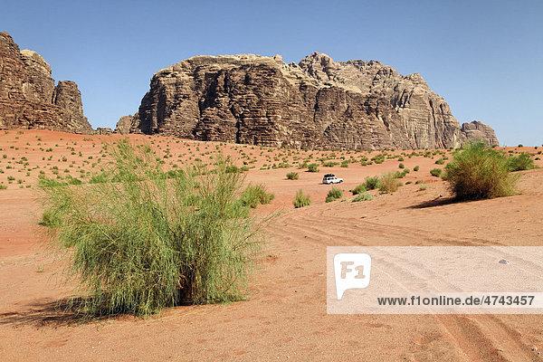 Berg  weite Ebene  Wüste  Büsche  Geländewagen  Wadi Rum  Haschemitisches Königreich Jordanien  Vorderasien
