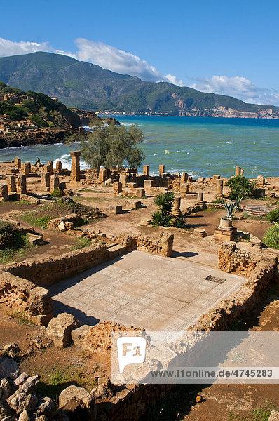 Die römischen Ruinen von Tipasa  Unesco Weltkulturerbe  Algerien  Afrika