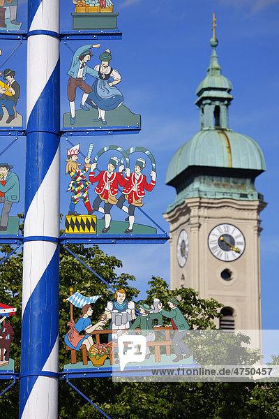 Maibaum am Viktualienmarkt mit Heiliggeistkirche  München  Bayern  Deutschland  Europa