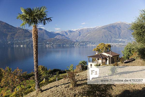 Ferienhaus in idyllischer Lage am Lago Maggiore  Ranzo  Sant Abbondio  Tessin  Schweiz  Europa Kanton Tessin