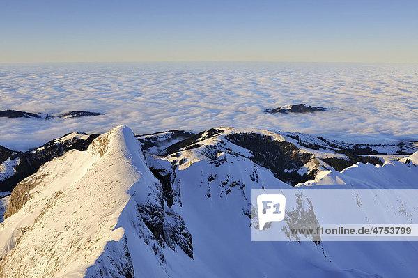 Der 2448 Meter hohe Girenspitz in der nördlichen Alpsteinkette  dahinter eine geschlossene Wolkendecke bis zum Horizont  Kanton Appenzell Innerrhoden  Schweiz  Europa