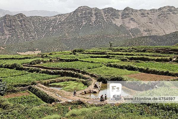 Eine Gruppe weiblicher Bewohner des Dorfes Iwasoudane wäscht ihre Kleider in einem Wasserbecken zwischen terrassierten Feldern  Region Ait Inzel Gebel  Atlas Gebirge  Marokko  Afrika
