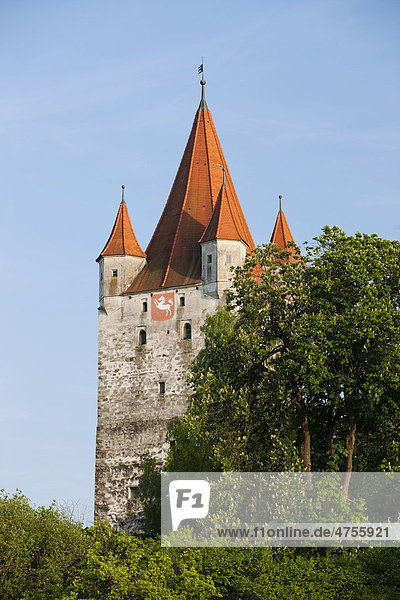 Burganlage von Haag  Oberbayern  Bayern  Deutschland  Europa