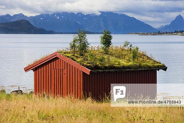 Sortland  Insel Langoya  Vesteralen  Norwegen  Skandinavien  Europa