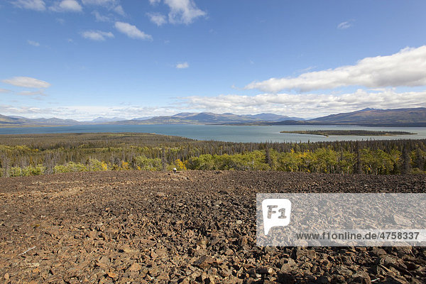 View  panorama over Dezadeash Lake from Rock Glacier  Indian summer  leaves in fall colours  autumn  Kluane National Park and Reserve  Yukon Territory  Canada