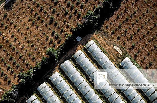 Greenhouses surrounded by planted crops