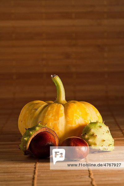 Still life of a yellow squash and chestnuts