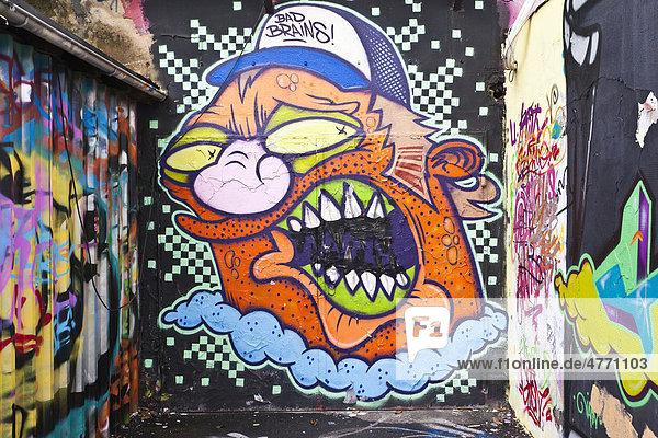 Graffiti  Alter Schlachthof  Wiesbaden  Hessen  Deutschland  Europa Graffiti, Alter Schlachthof, Wiesbaden, Hessen, Deutschland, Europa