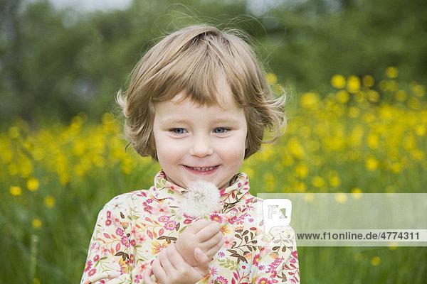 Mädchen erfreut sich an einer Pusteblume  Porträt