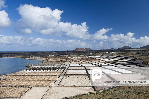 Sea salt refinery  pools of brine  Salinas de Janubio  Lanzarote  Canary Islands  Spain  Europe