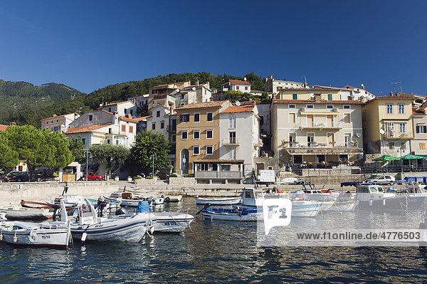 Fischerboote im Hafen von Moscenicka Draga  Istrien  Kroatien  Europa