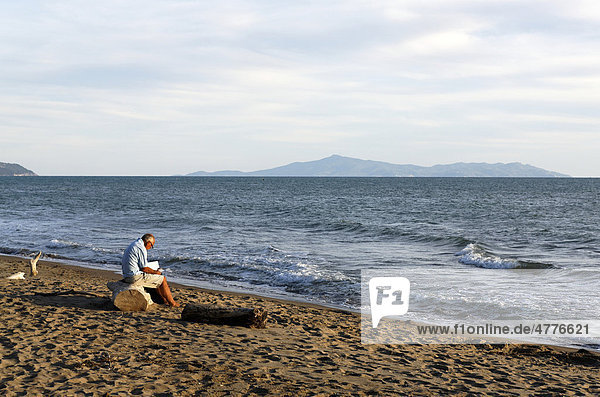 Old man sitting on drift wood and reading at the beach of the Mediterranean Sea  Maremma  Giglio island in the distance  Tuscany  Italy  Europe