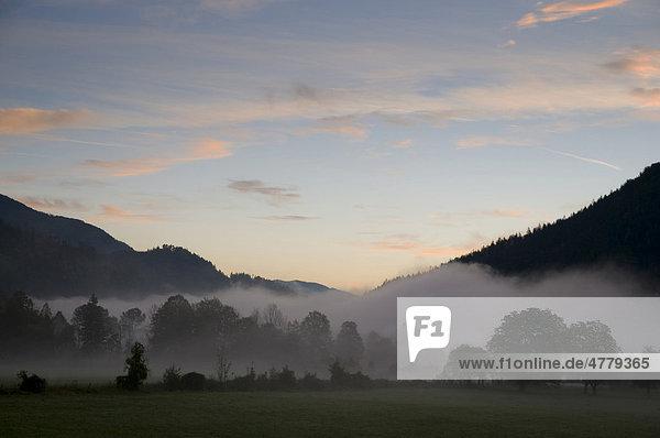 Alpenlandschaft  Morgennebel  Niederösterreich  Österreich  Europa