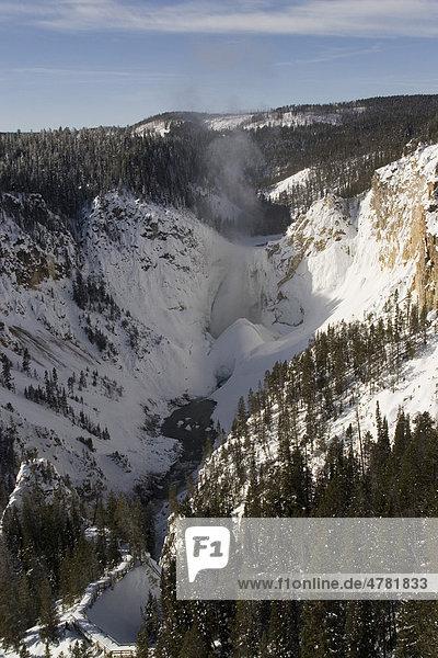 Lower Falls  Wasserfälle des Yellowstone Rivers  Yellowstone-Nationalpark  Wyoming  USA  Nordamerika