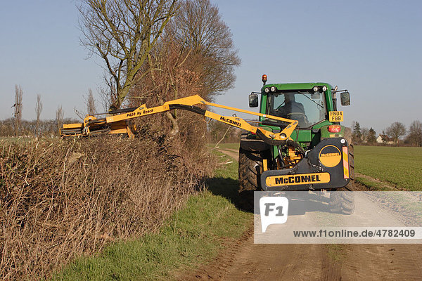 Maschineller Heckenschnitt an einem Feldweg  Essex  England  Großbritannien  Europa