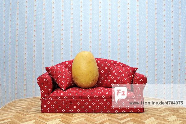 Potato on a sofa  symbolic image  Couch Potato